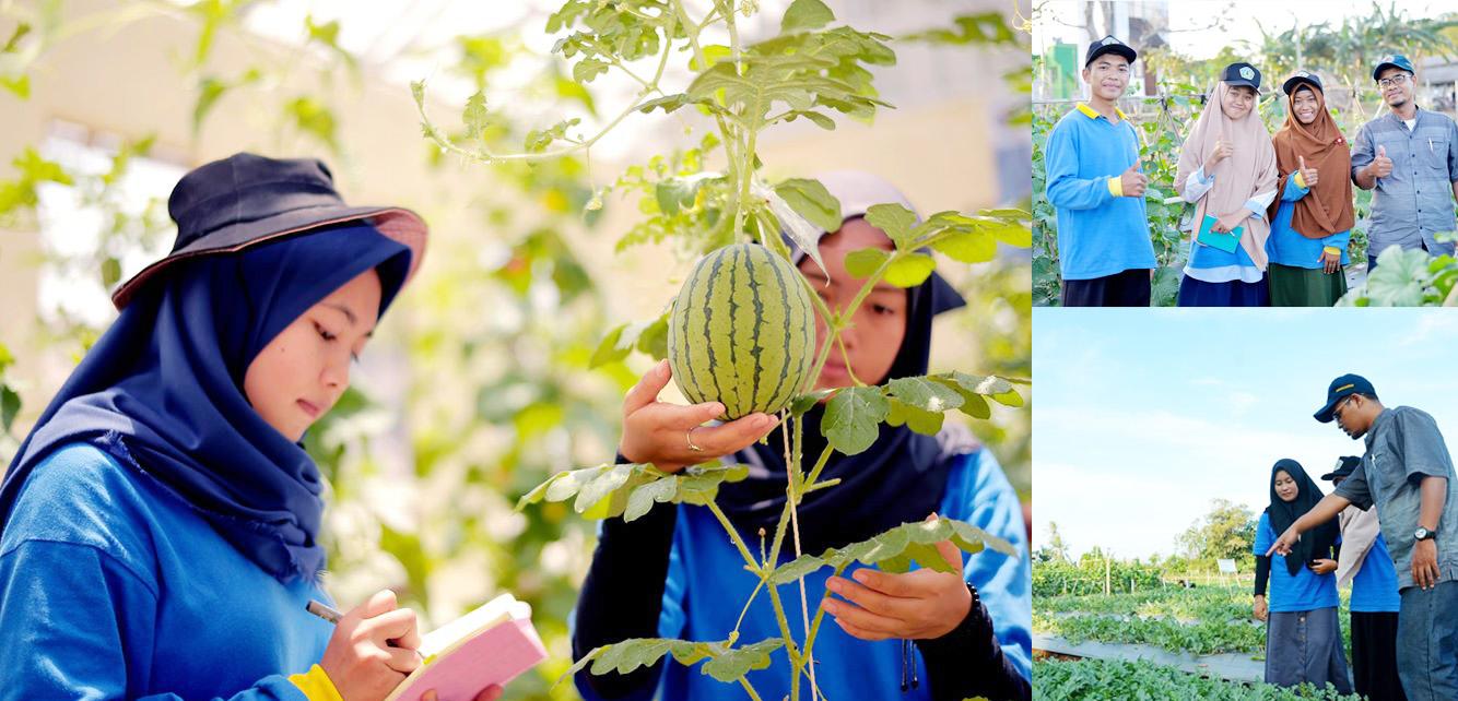 Seed Teaching Farm Politeknik Negeri Lampung
