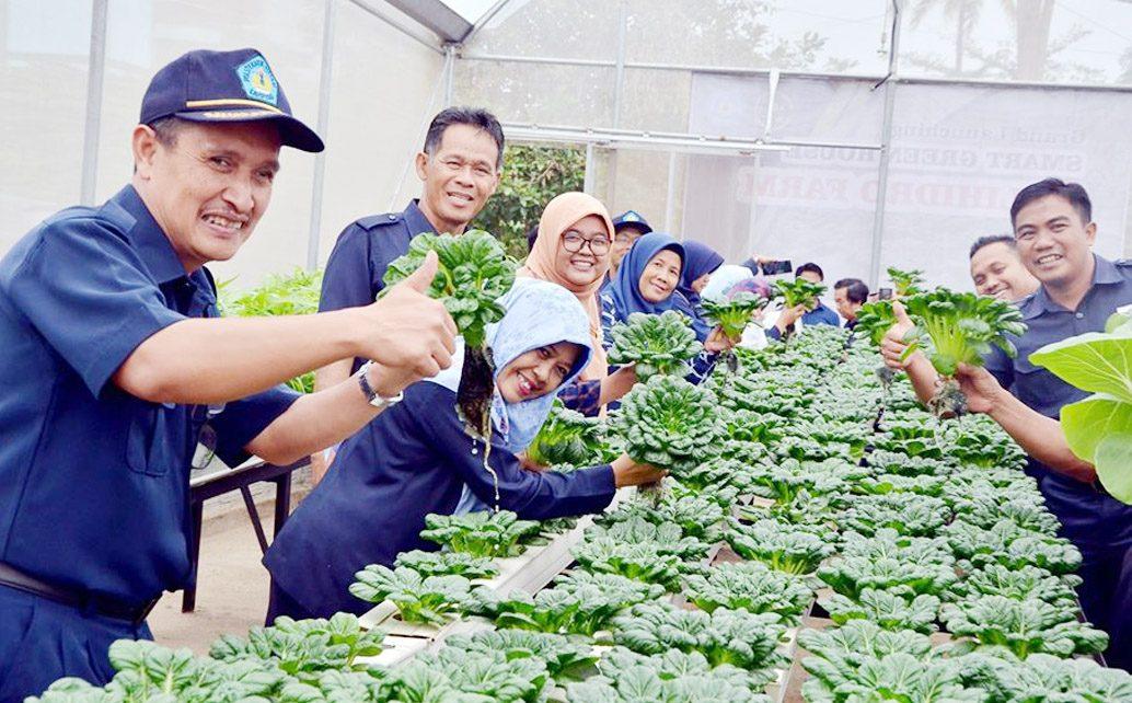 Smart Green House Polihidro Farm Politeknik Negeri Lampung