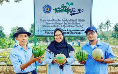Seed Teaching Farm